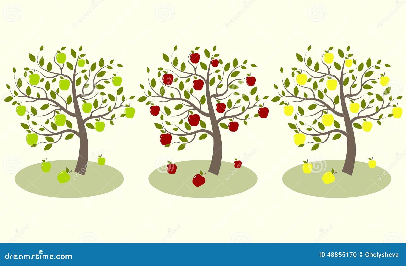 Three Apple Tree Stock Vector Illustration Of Isolated 48855170