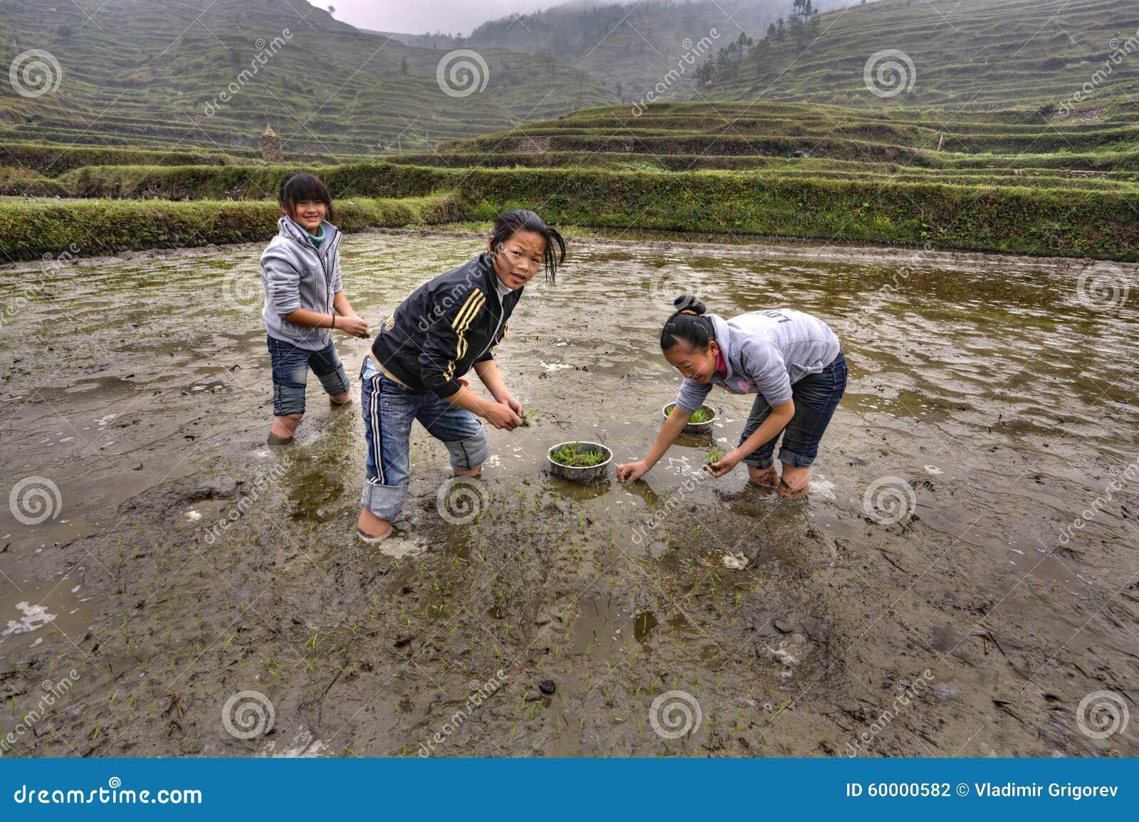 art-asian-rice-girls-girls-pics-teen