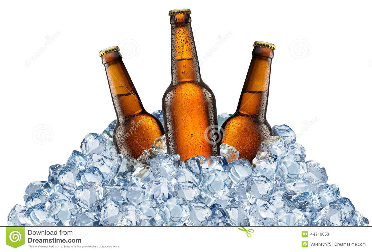 Three beer bottles getting cool in ice cubes.
