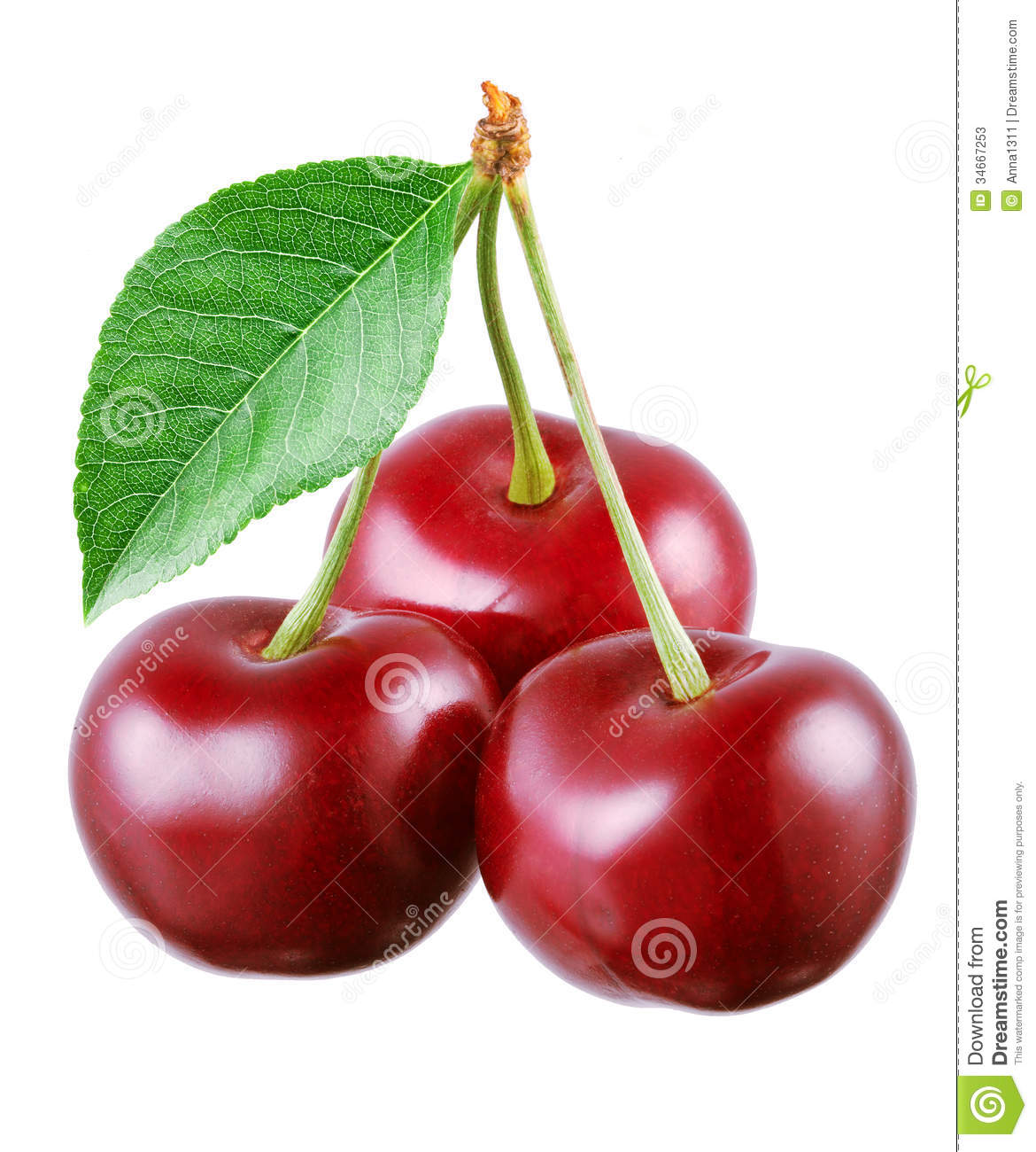 Three cherries with leaf isolated on white.