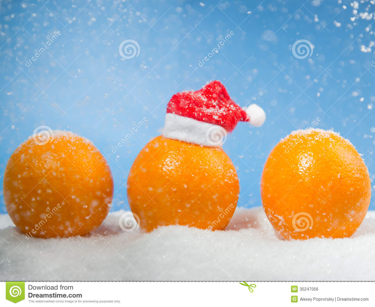 three christmas oranges - Christmas Oranges