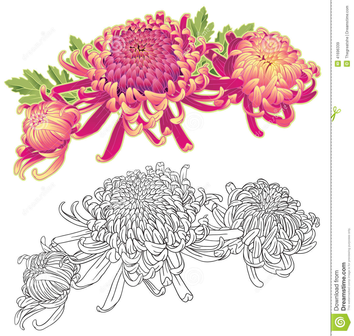 Three Chrysanthemum Flower Composition Stock Vector