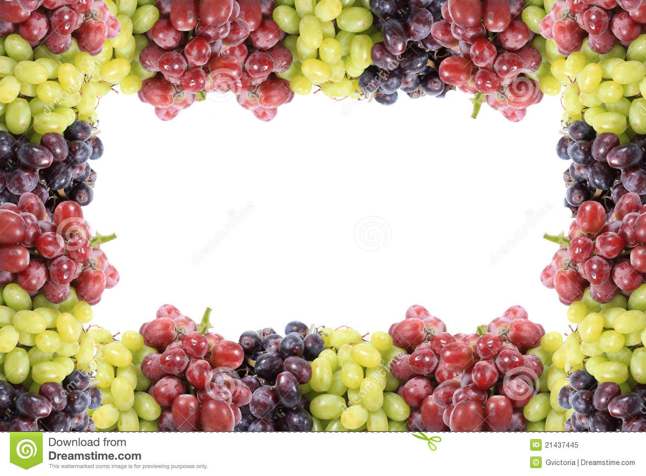 Three Different Types Of Grapes Border Or Frame Stock Image Image