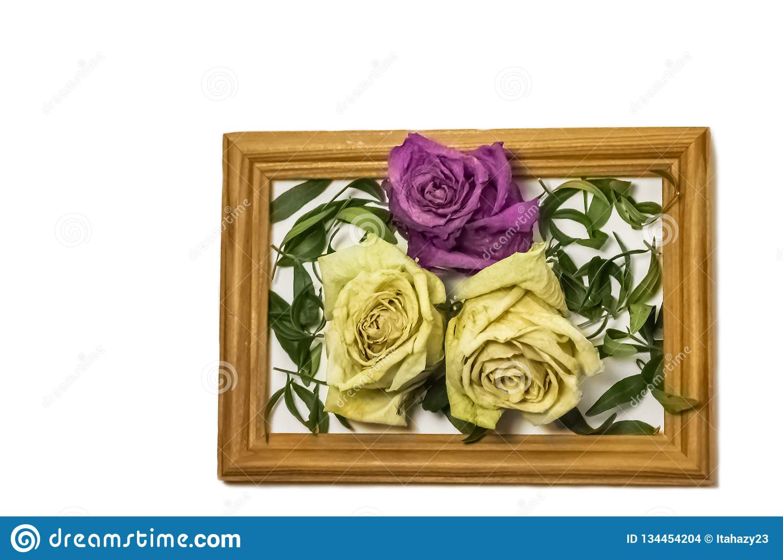Three dry roses with leaves, two white roses, one pink rose, inside a wooden frame