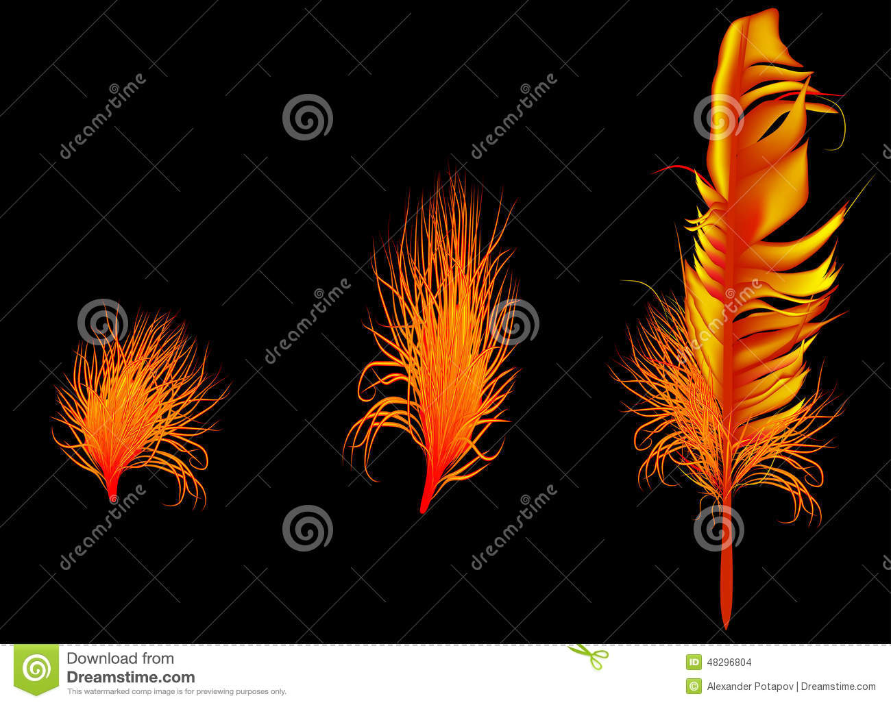 Three Flame Color Feathers On Dark Background Stock Vector