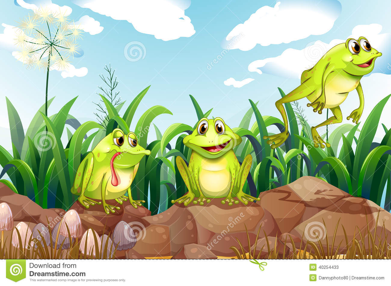 Three Frogs Above The Rocks Stock Vector - Illustration of ised, grass:  40254433