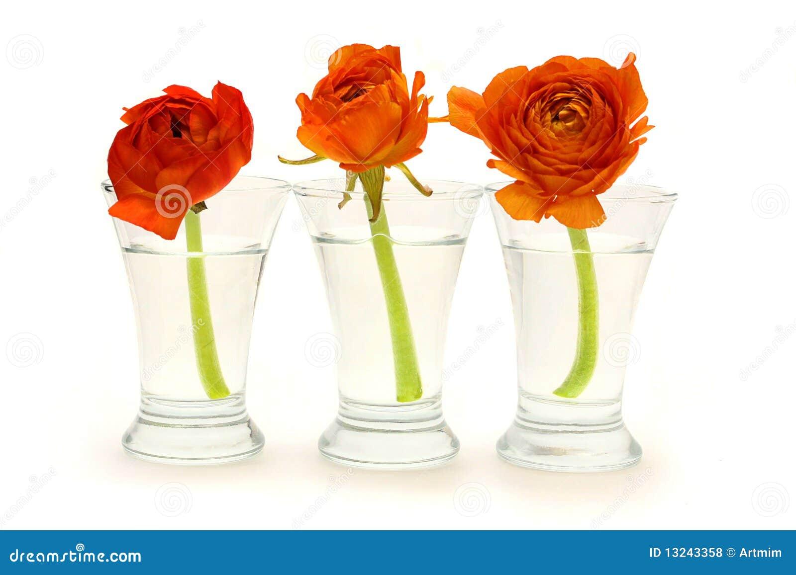 Three Glass Vases With Orange Flowers Royalty Free Stock ...