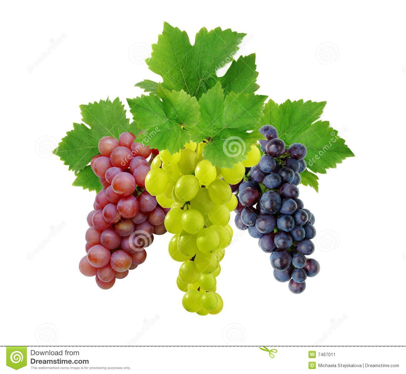Three grapes with leaves