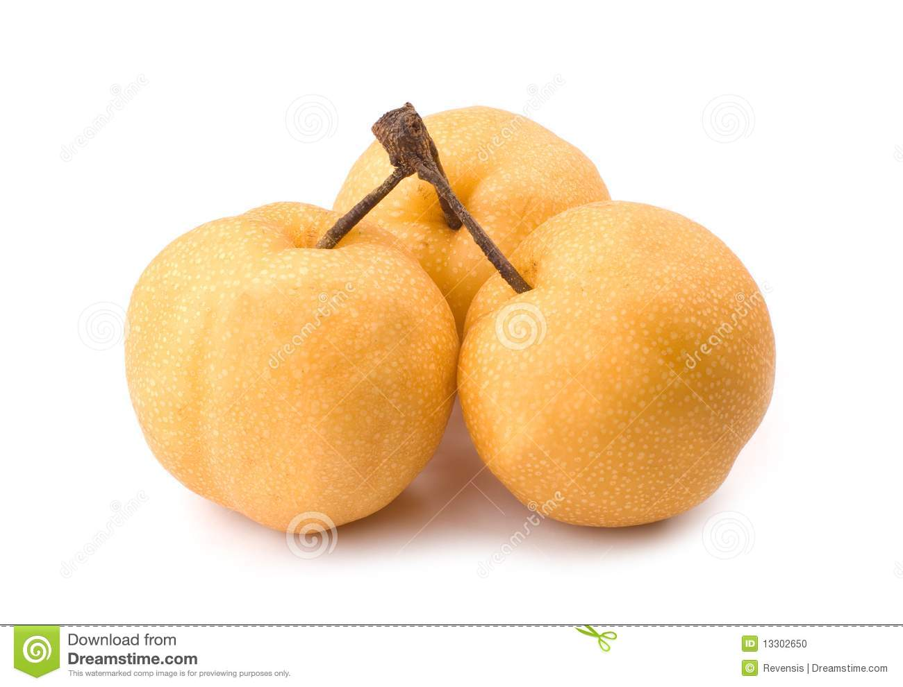 Asian pear pleach