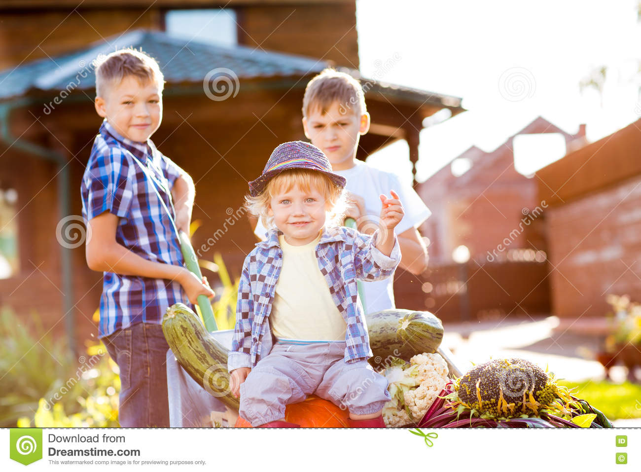 royalty free stock photo download three kids brothers as gardeners