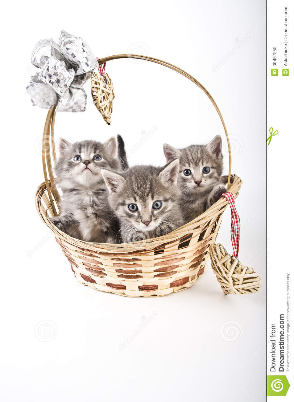 Three Kittens In Basket Royalty Free Stock Photos - Image ...