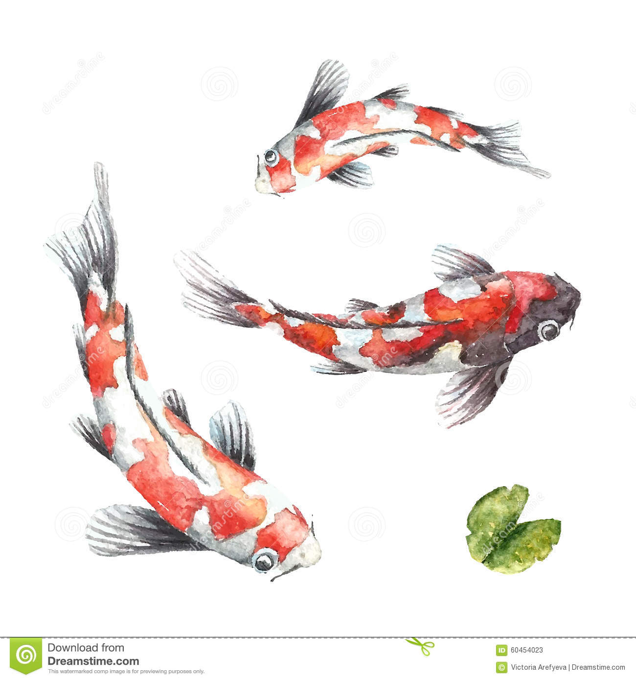 Three koi fish on white background stock vector image for Red and white koi fish