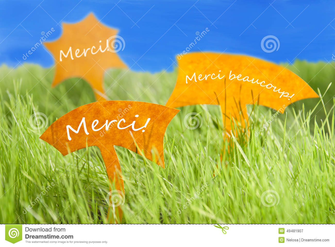 Three Labels With French Merci Which Means Thank You And Blue Sky