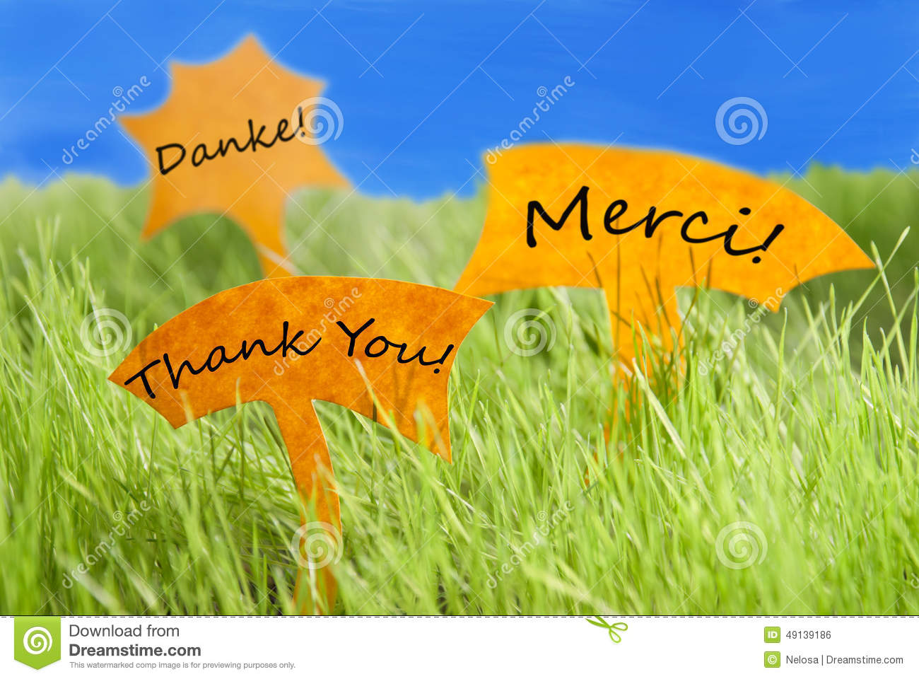 Three labels with thank you in different languages and for Green in different languages