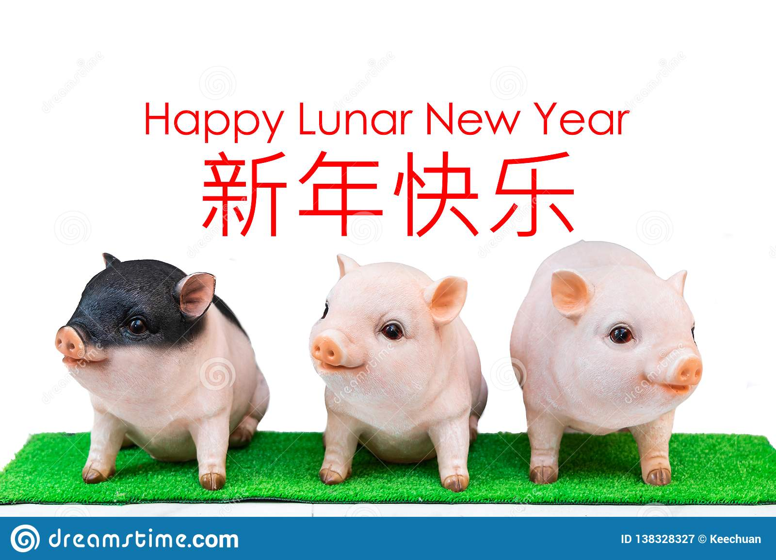 Three pig boar in white background with Happy Lunar New Year greeting text. Pig is 2019 Chinese New Year zodiac