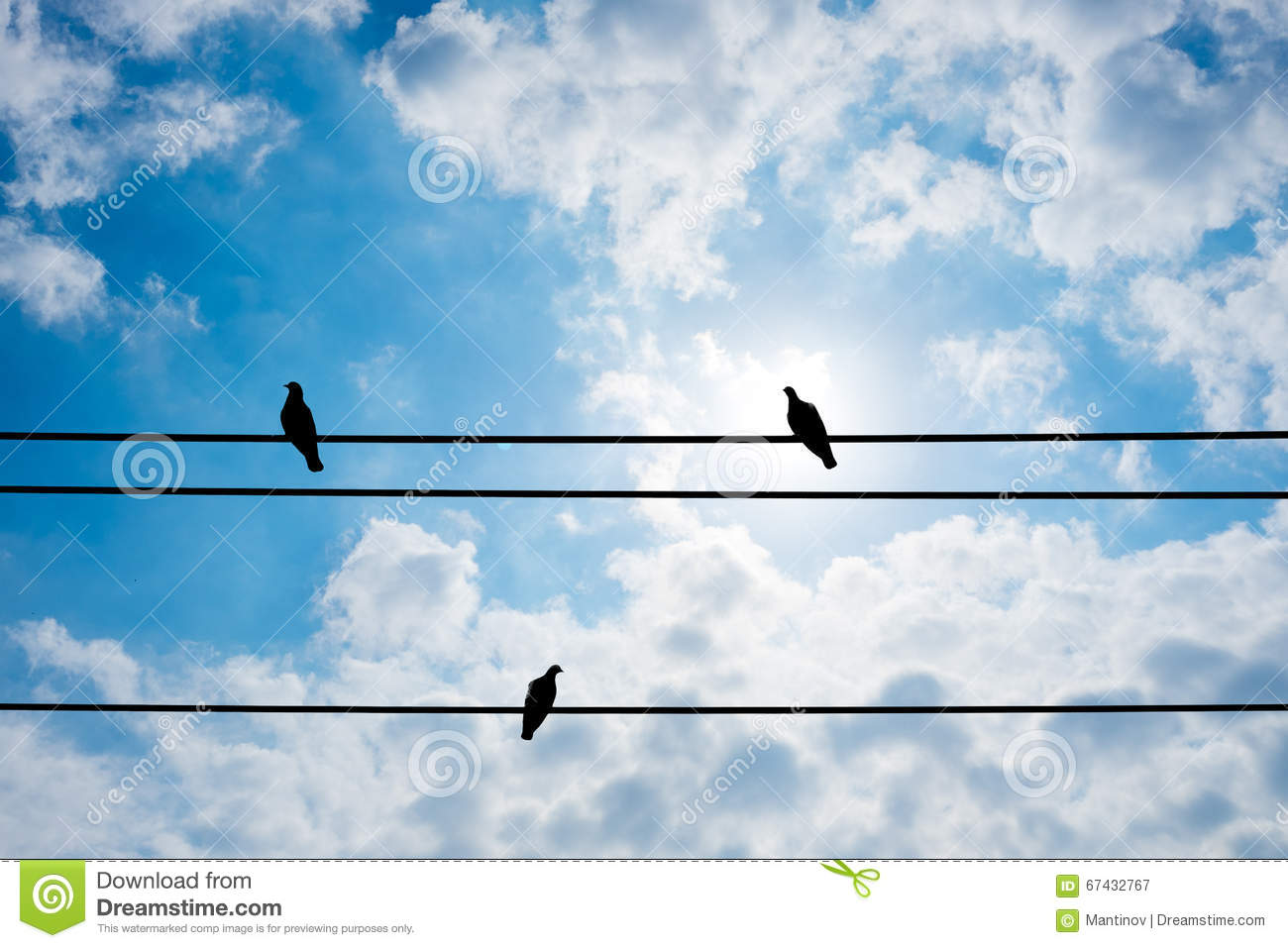 Three Pigeon On Electric Wire And Summer Sky Stock Image - Image of ...