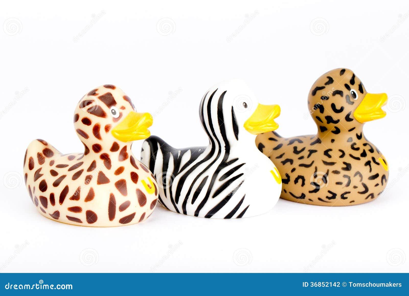 Three plastic wild ducks