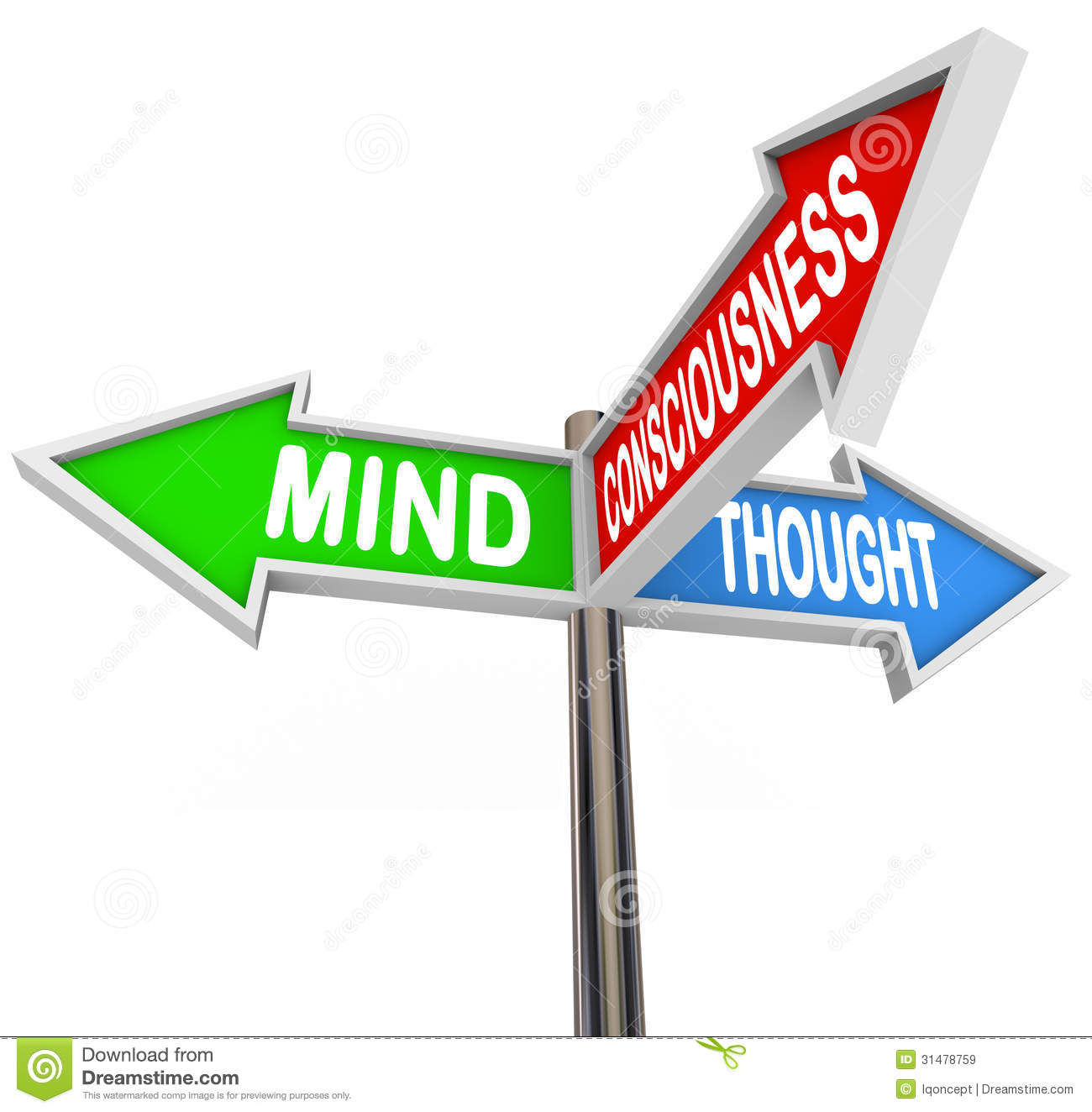 Three Principles Mind Consciousness Thought Arrow Signs. General Contracting Banners. Vacancy Signs. Nexus Banners. Fret Decals. Classy Signs. Hang Loose Signs. Cancer Logo. Aquarium Murals