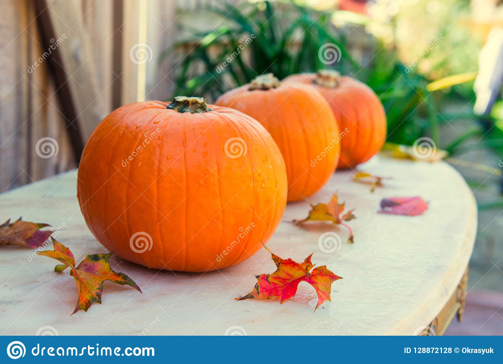 Three pumpkins with fall leaves on stone table with gaarden seasonal background. Autumn harvest, thanksgiving, halloween concept.