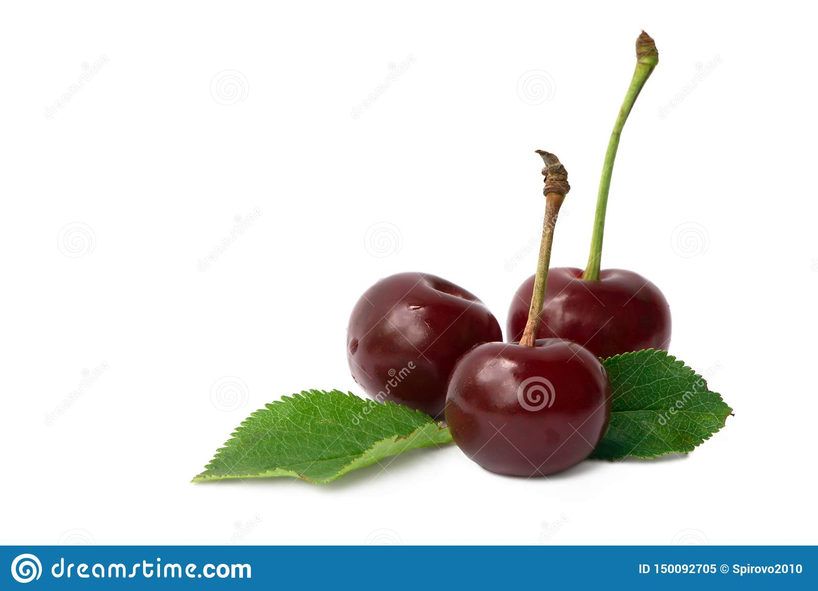 Three red cherry fruits with leaves isolated on white background