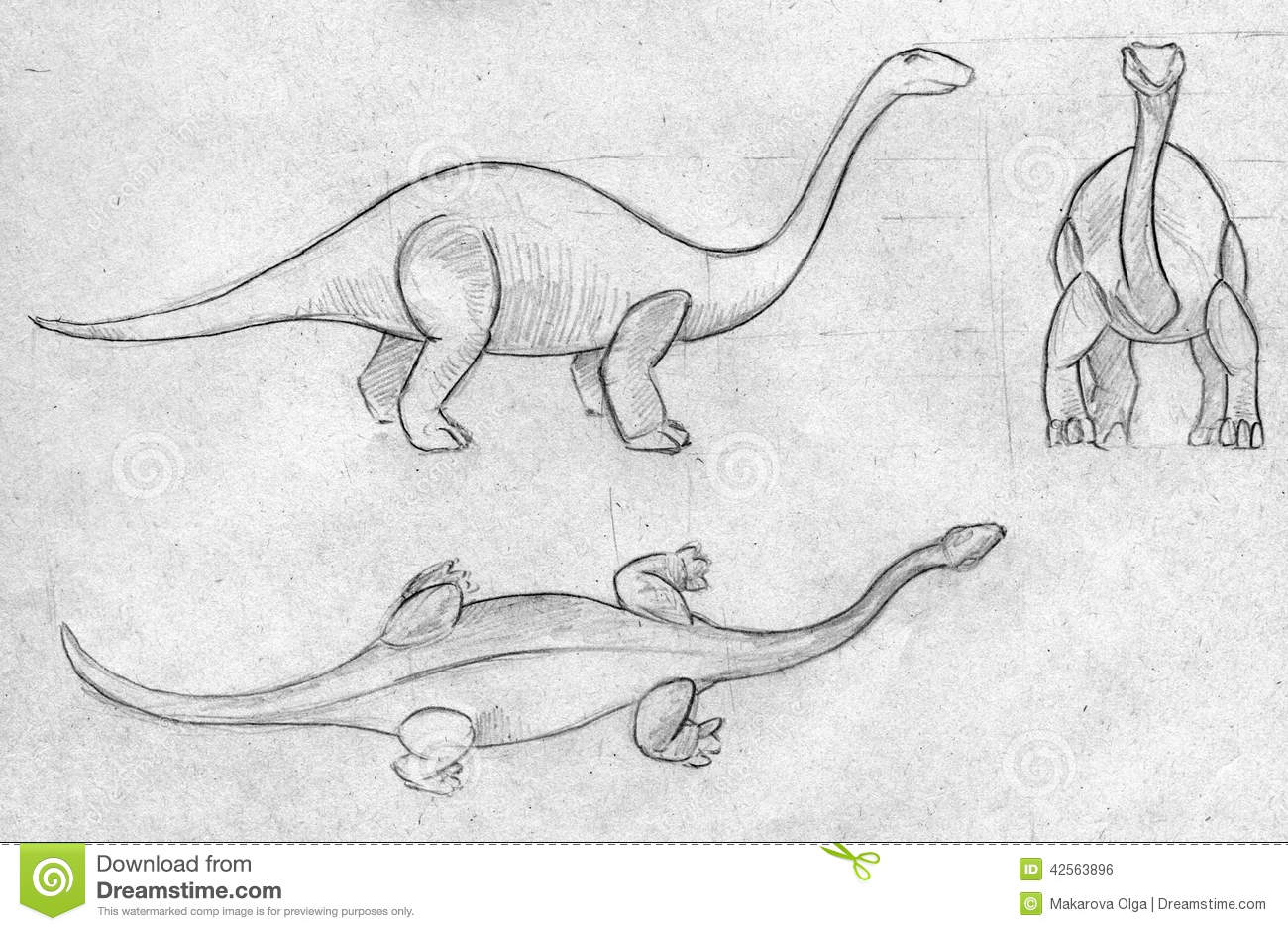 Uncategorized Sketches Of Dinosaurs three sketches dinosaur hand drawn pencil diplodocus huge long neck top side front views 42563896 jpg