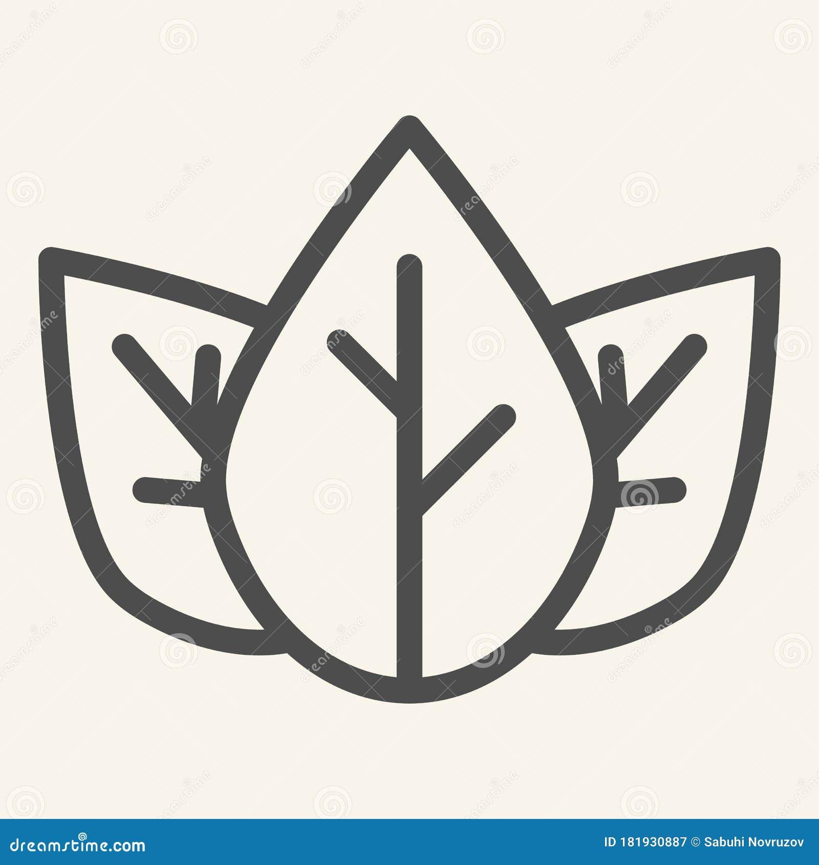 Mint Leaves Organic Logo Concept: Three Tea Leaves Line Icon. Spa And Organic Symbol