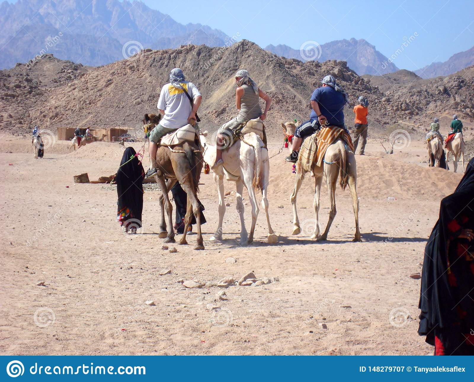 Three tourists ride on camels accompanied by a guide.
