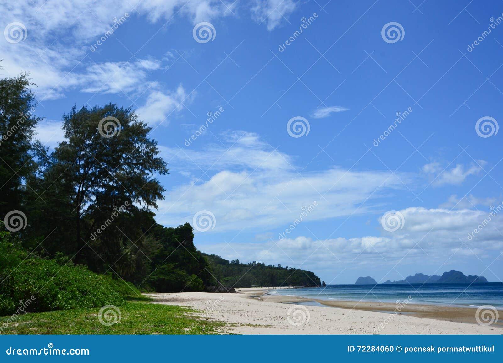 Download Thung спело пляж стоковое фото. изображение насчитывающей человек - 72284060