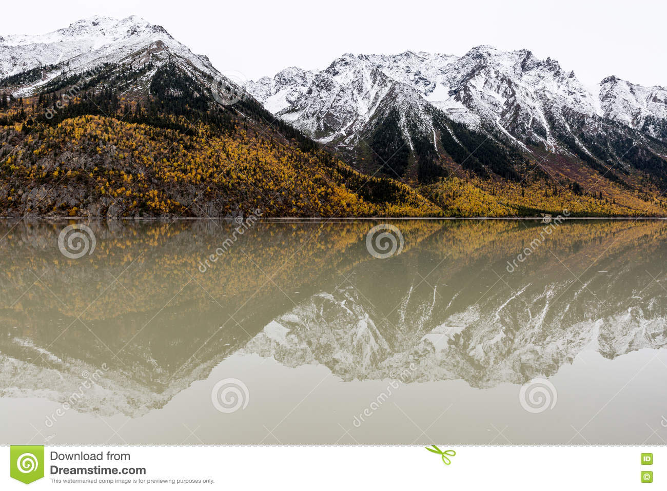 Ranwuhu Banks Of The Tibetan People Royalty Free Stock Images ...