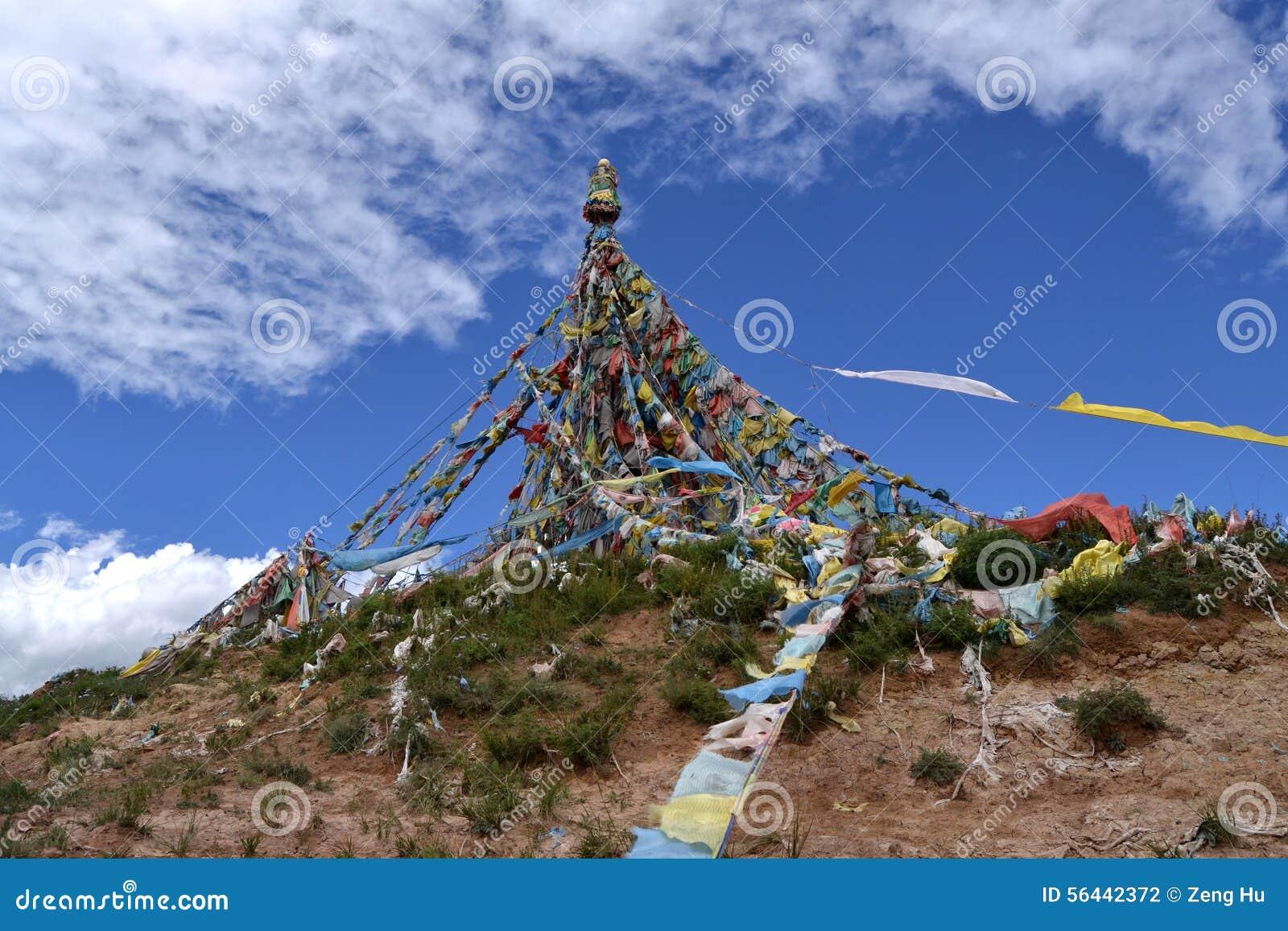 Tibetan Grayer flags