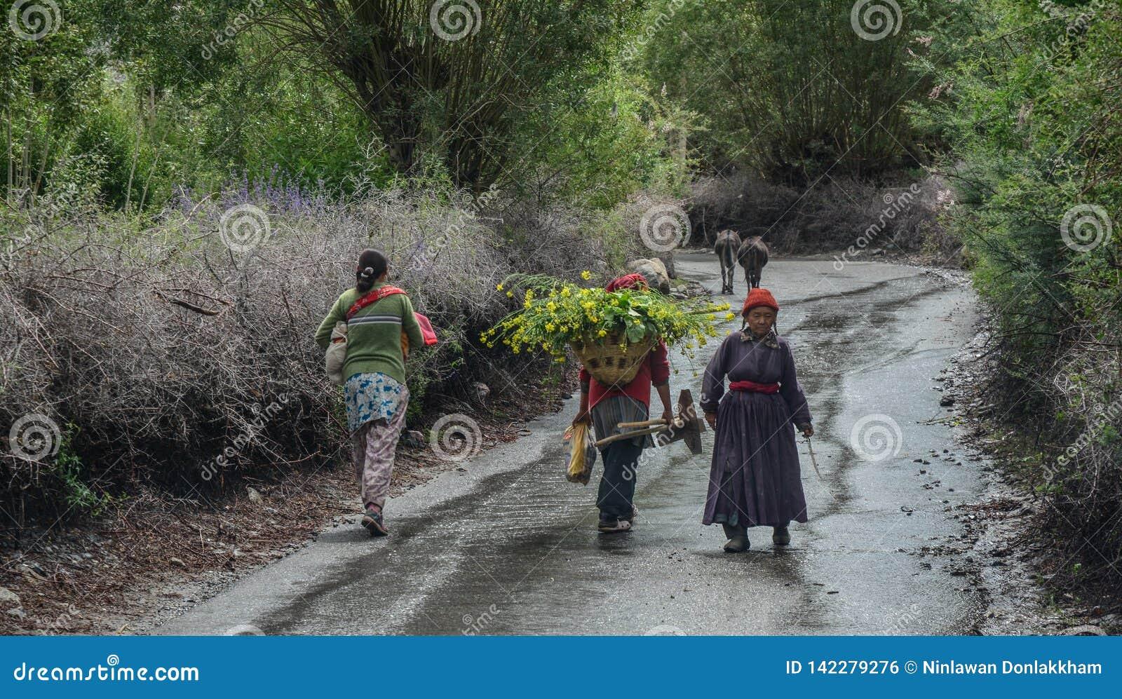 Tibetant folk som går på den lantliga vägen
