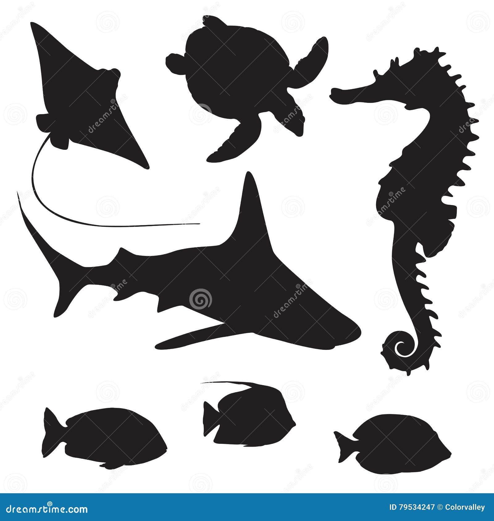 Tiburón Tortuga Pescados Y Silueta Del Seahorse Ilustración Del