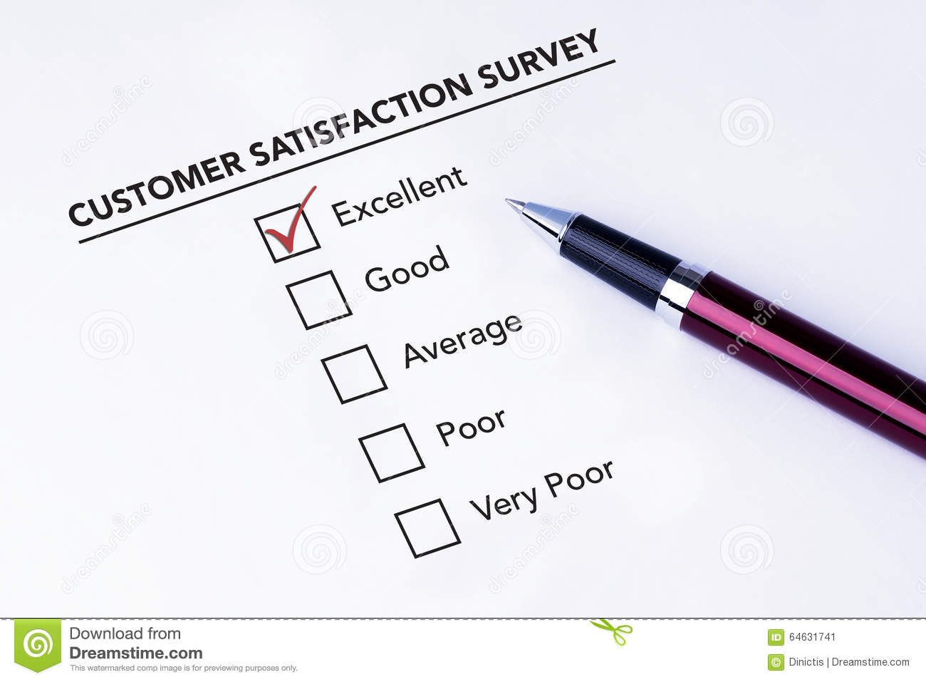 Tick Placed In Excellent Check Box On Customer Service
