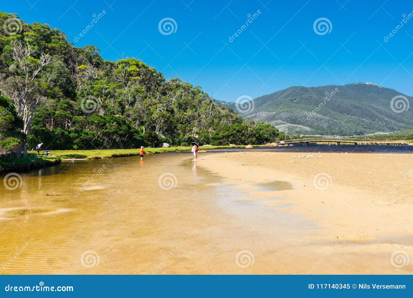 Tidal River no seção sul do parque nacional do promontório de Wilsons em Gippsland, Austrália