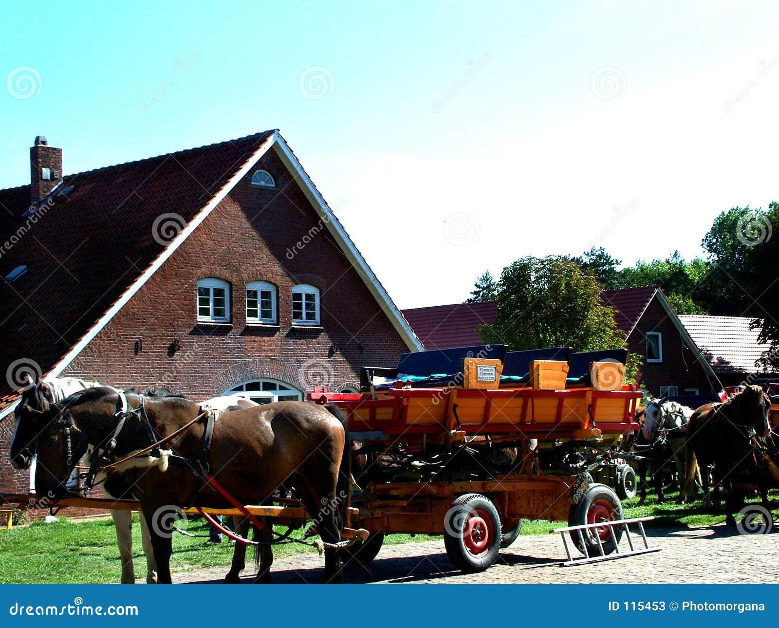 Tideland-Lastwagen