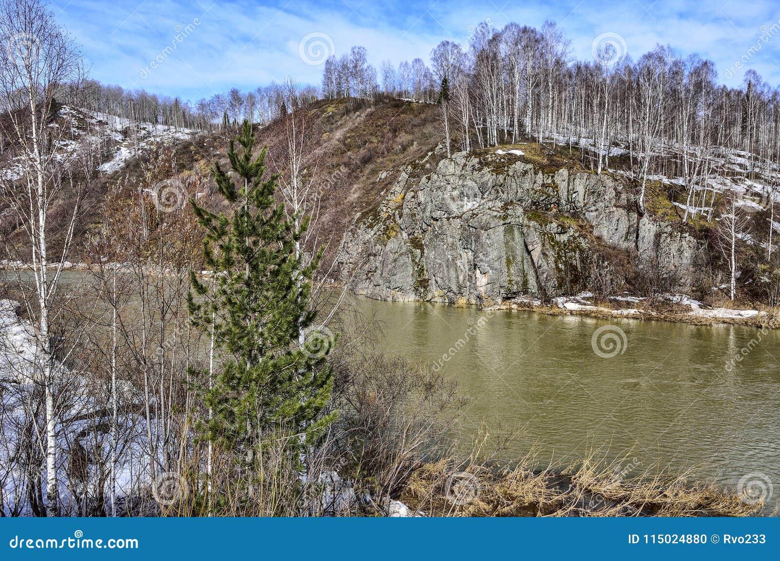 Tidigt vårlandskap på bergfloden med steniga banker