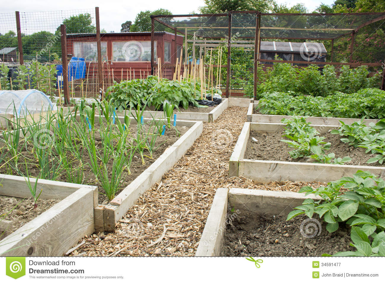 Tidy Vegetable Garden Royalty Free Stock Photography - Image: 34591477