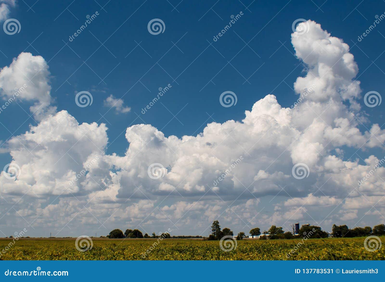 Tiefer blauer Sommerhimmel mit hellen geschwollenen Wolken, Bond County, Illinois