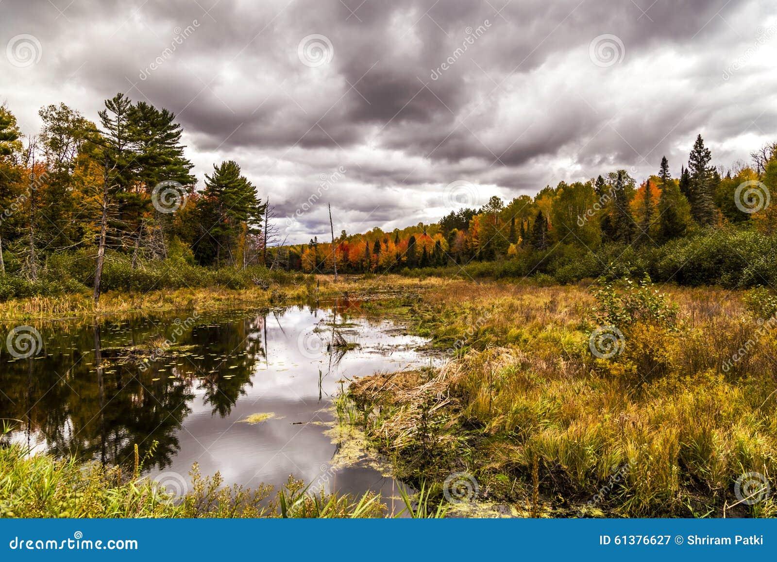 Tiempo nublado del otoño en Michigan