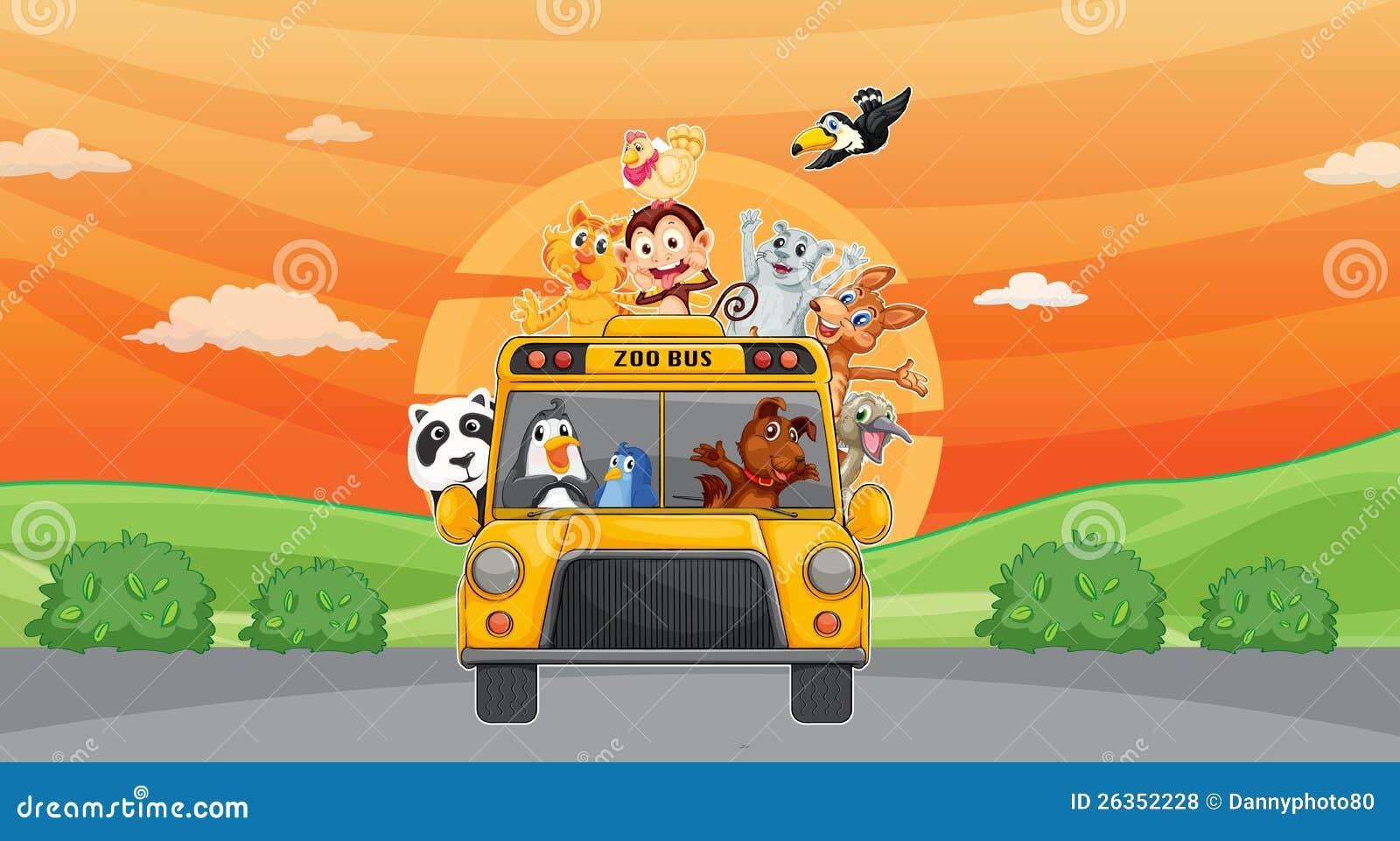 Tiere und Zoobus