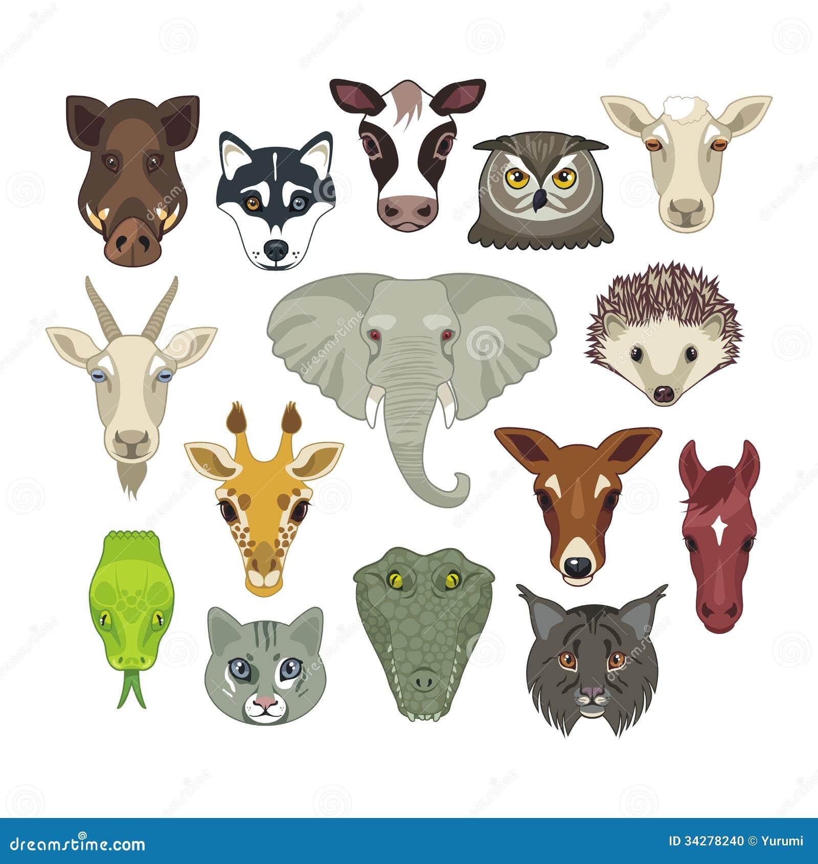Tierk pfe eingestellt vektor abbildung illustration von - Cabezas de animales decoracion ...