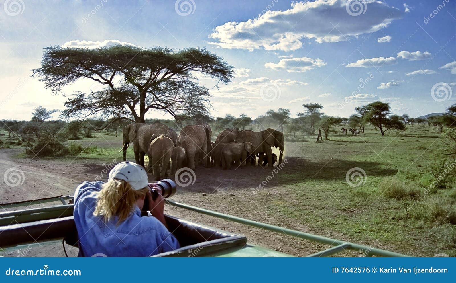 Tierphotograph