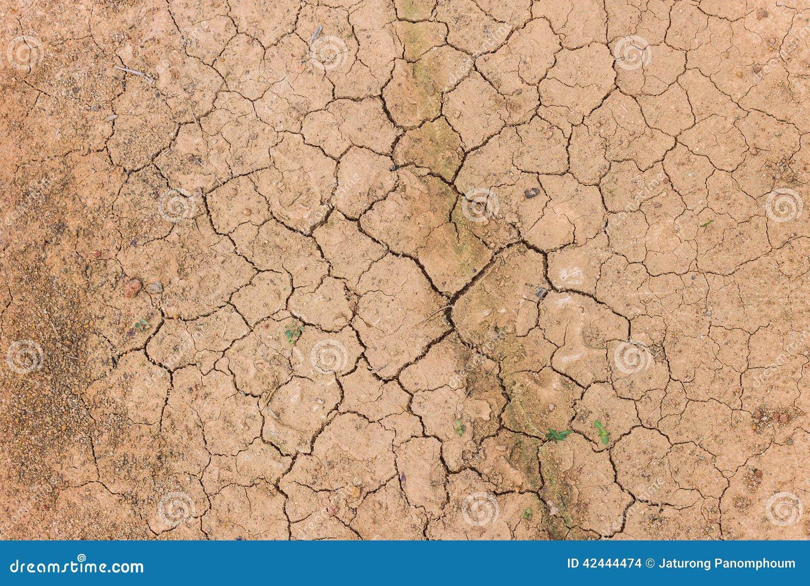 Tierra agrietada del suelo