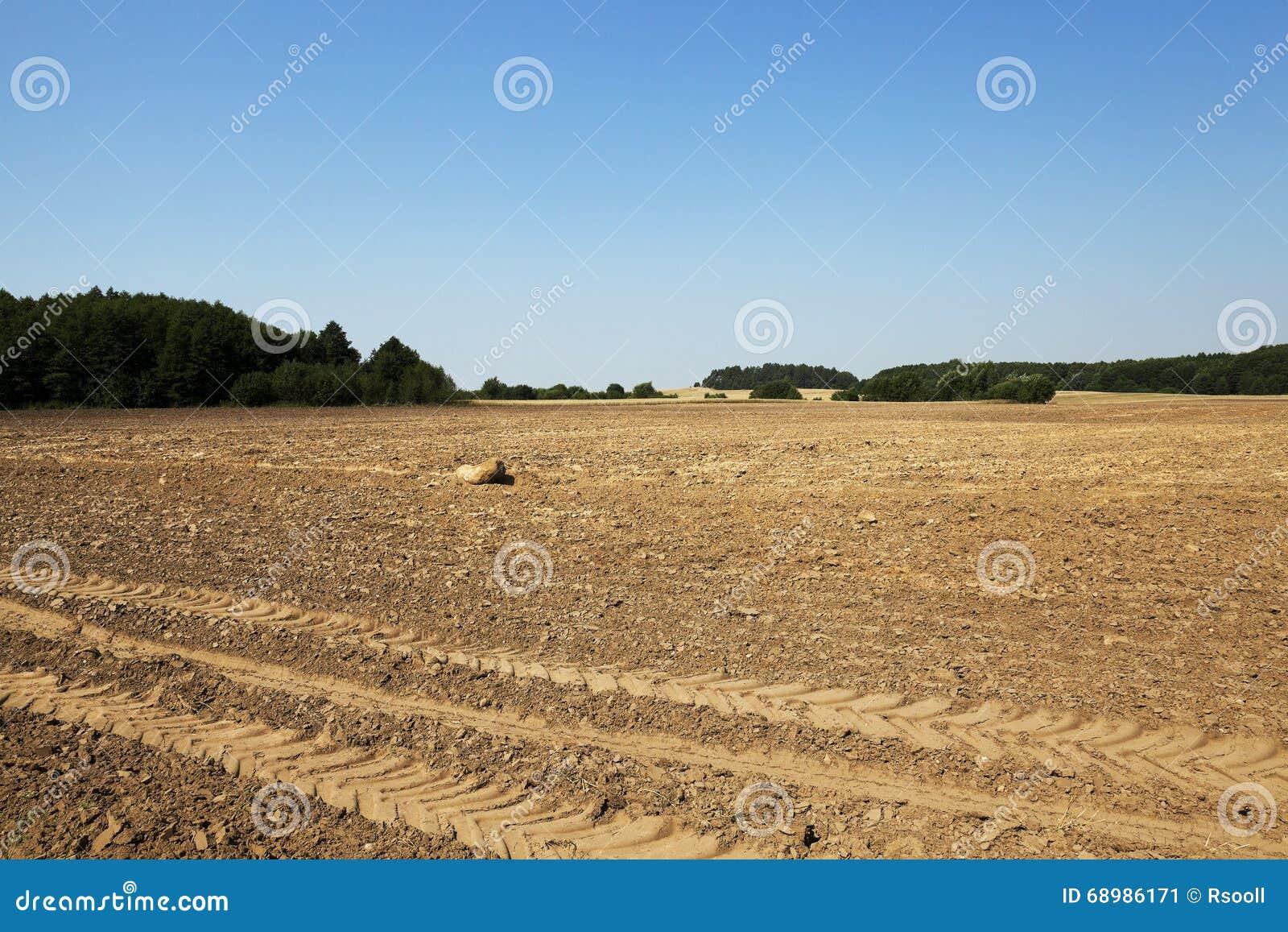 Tierra arada, verano
