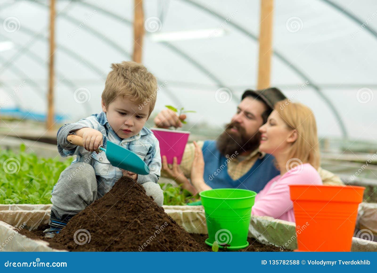 Tierra rica ricos de la tierra con fértil tierra rica para las plantas crecientes familia en trabajo del invernadero con la tierr