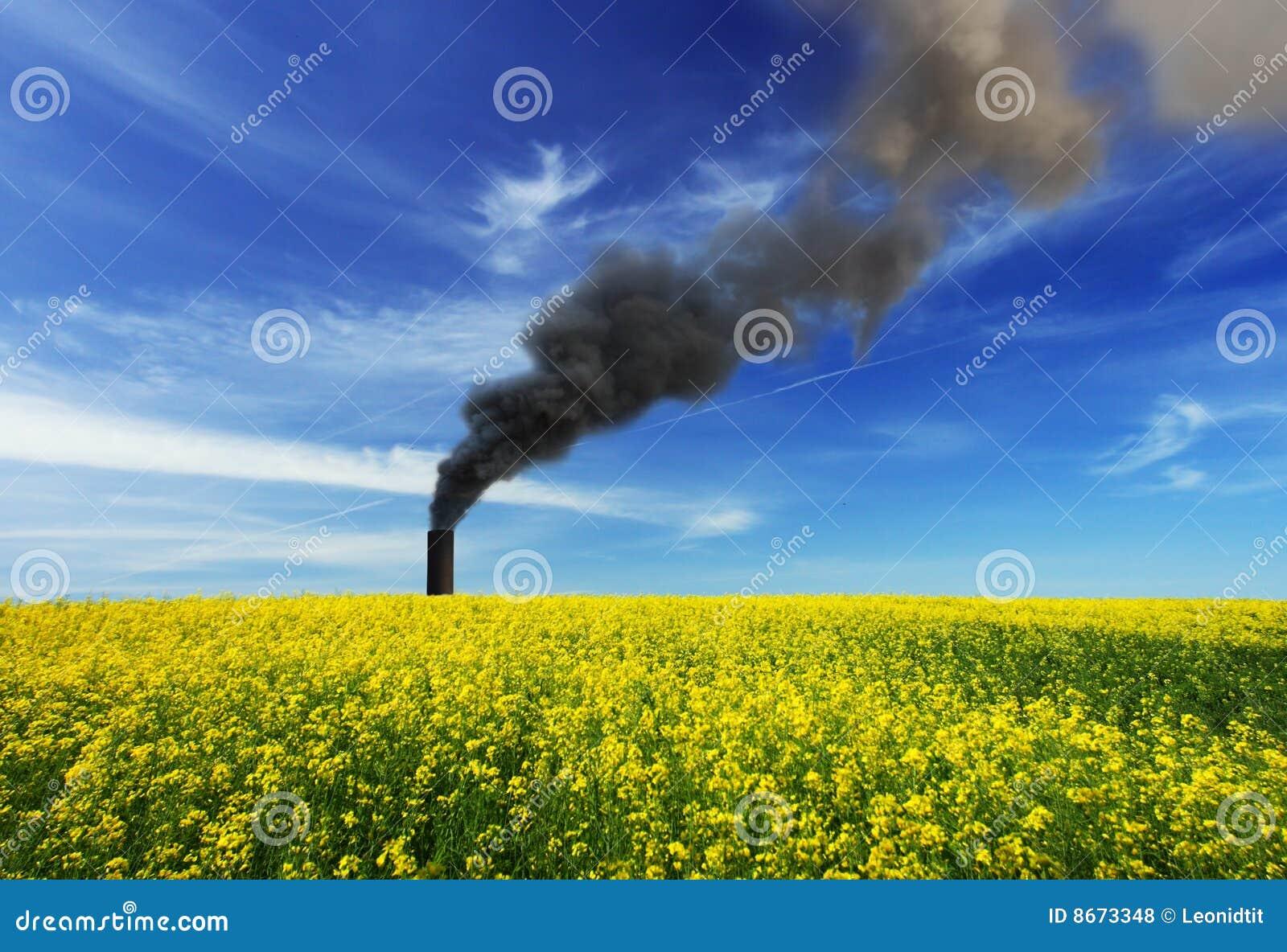 Tige de fumage de cheminée