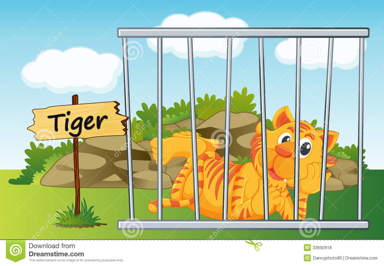 Tiger in cage royalty free stock photos image 33692918 - Tiger in cage images ...