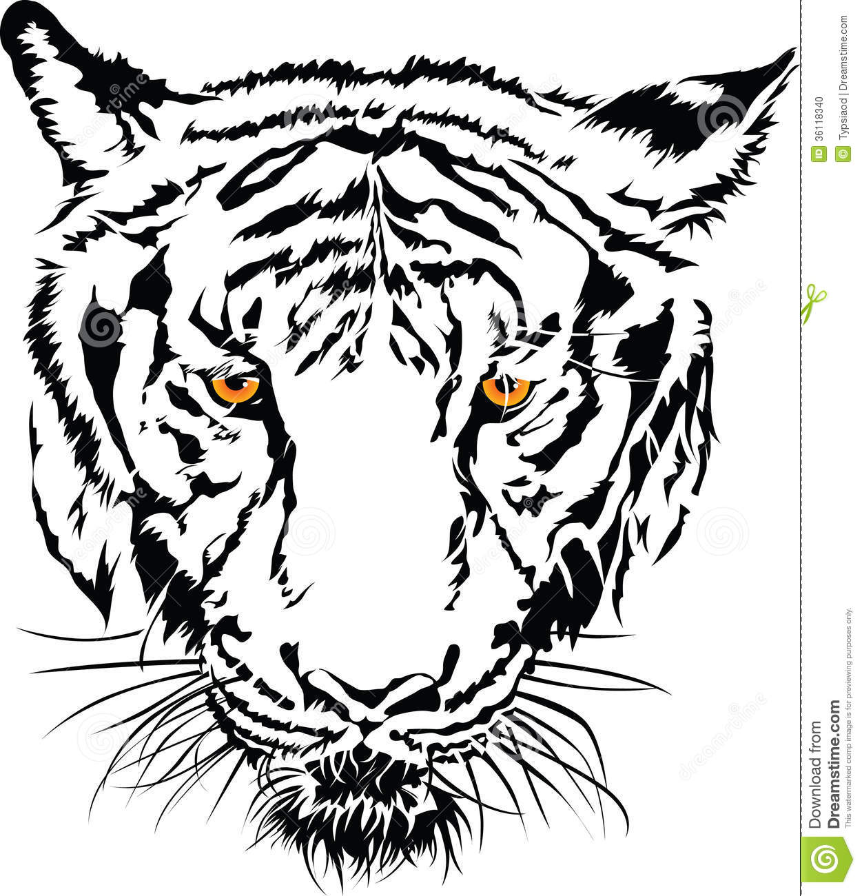 tiger face black and white with the yellow eye stock