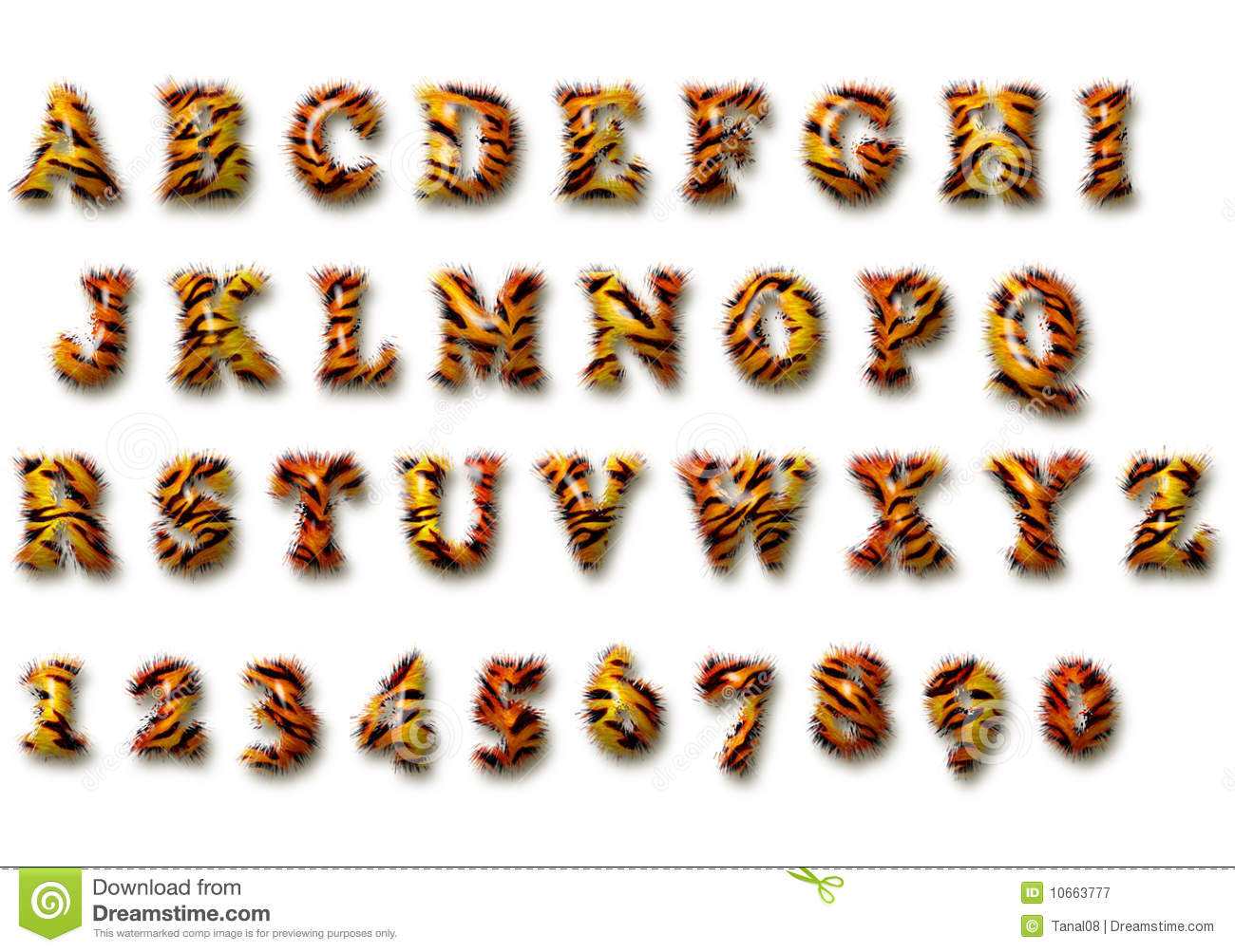 Tiger Font Royalty Free Stock Photography Image 10663777