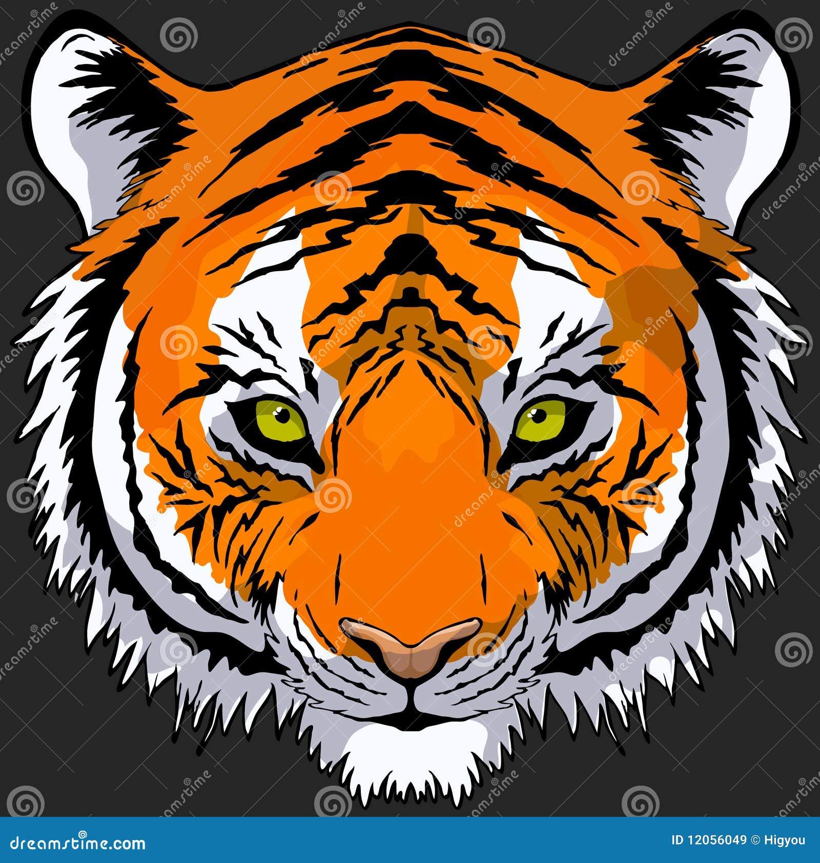 Tiger head drawing - photo#14